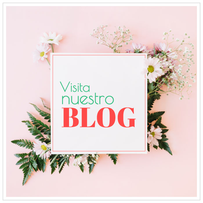 flores-bellas-blog