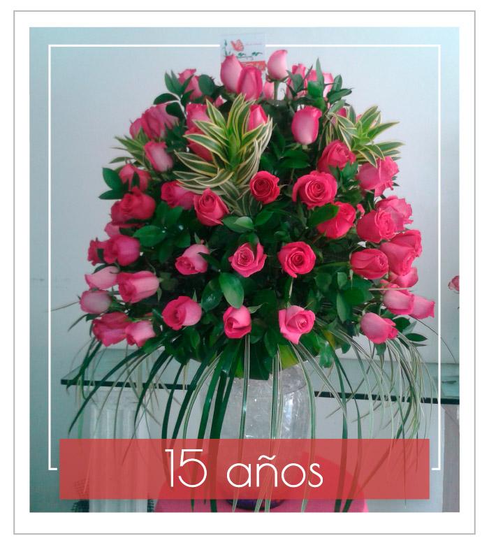 flores-bellas-catgr-1